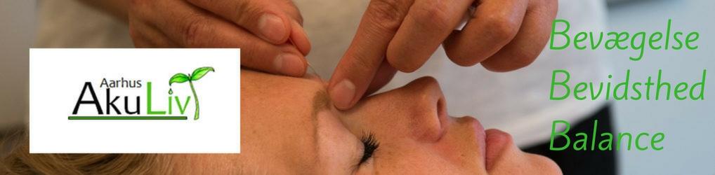 Kinesisk Akupunktur og Fysioterapi
